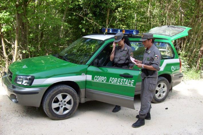 Riforma P.A.: verso accorpamento Forestali-Carabinieri