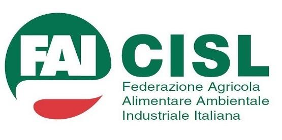 Riunione rinnovo CCNL per gli addetti ai lavori di sistemazione idraulico-forestale e idraulico-agraria