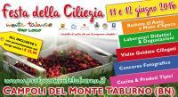 Festa della ciliegia, tra degustazioni e laboratori