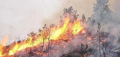Regione, più elicotteri per lotta a incendi boschivi