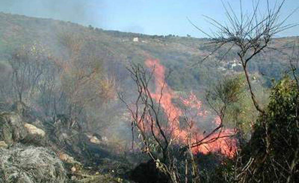Bagnoli Irpino| Dà fuoco ai residui vegetali, nei guai un cittadino
