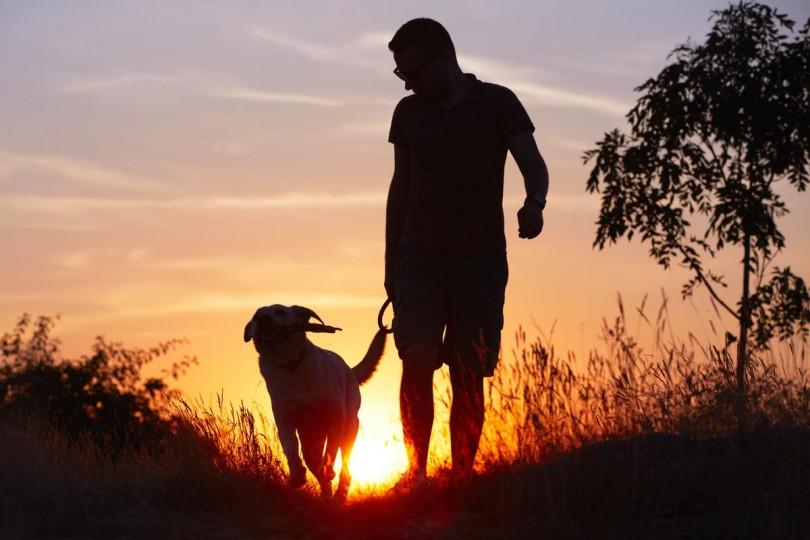 Il sindaco Valentino emana l'ordinanza per i titolari dei cani