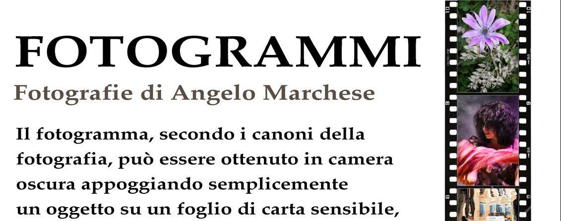 Al via la mostra fotografica di Angelo Marchese