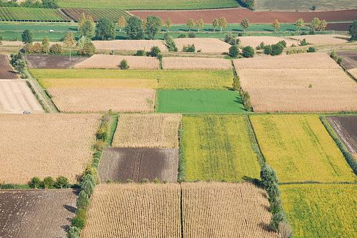 Siccità, arrivano le integrazioni di idrocarburi per agricoltori e allevatori