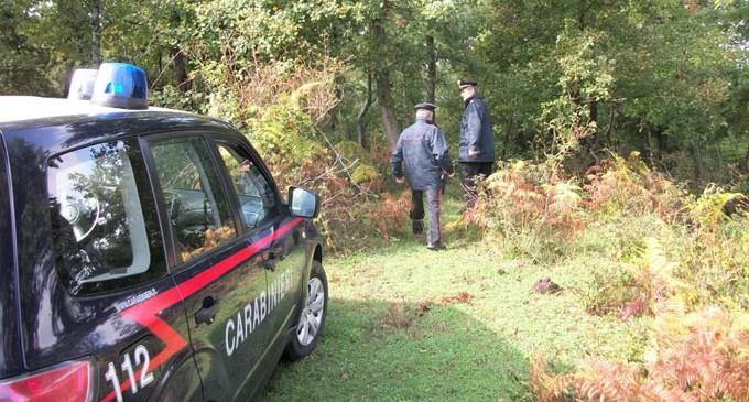 Nuovi roghi agricoli: carabinieri denunciano 4 persone in Irpinia