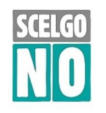 Benevento| Referendum, Scelgo no: tramonta idea partito della Nazione
