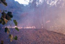 Monteforte Irpino| Bruciano residui vegetali nel proprio fondo agricolo, denunciati marito e moglie