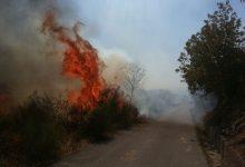 Regione Campania:Programma antincendio boschivo