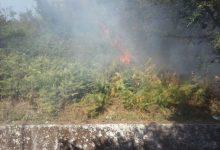 L'Irpinia brucia ancora: 20 incendi<span class='video_title_tag'> -Video</span>
