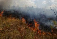 Montoro| Bruciano residui vegetali nei loro fondi agricoli, denunciate 4 persone