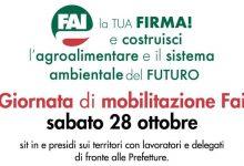 Benevento| FAI CISL: sabato 28 ottobre giornata di mobilitazione