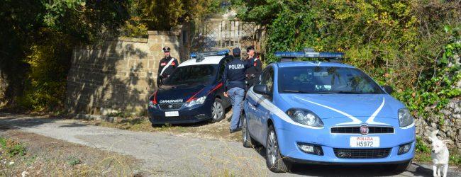 San Giorgio del Sannio  Tentato furto in abitazione, arrestati due ladri rumeni