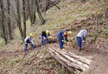 Benevento| La Provincia autorizza il pagamento delle spettanze ai lavoratori forestali