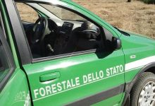 Forino| In montagna con la bici 30enne perde l'orientamento, ritrovata dai carabinieri forestali