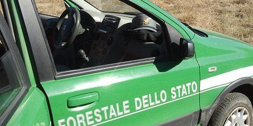 Avella| Pannelli di amianto lungo il Vallone Castellone, si cercano i responsabili