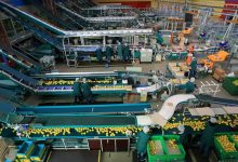 Industria ed economia,la fotografia dell'indagine Anticimex