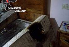 S.Andrea di Conza  Mozzicone di sigaretta incendia il letto, anziana salvata in extremis