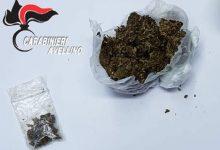 Aquilonia| Droga, il cane Olli scova la marijuana in un centro per migranti