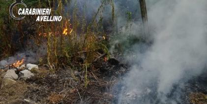 Quindici  Residui vegetali bruciati vicino alle abitazioni, nei guai altre 3 persone