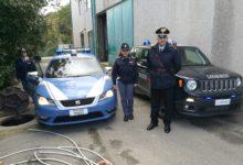 Solopaca| Si era reso responsabile di furto pluriaggravato, Polizia di Stato e Carabinieri bloccano a Solopaca un cittadino rumeno