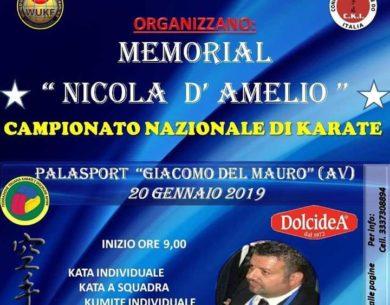 Avellino| Domenica al Paladelmauro il memorial di karate dedicato a Nicola D'Amelio