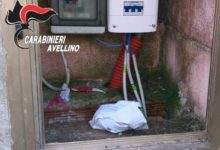 Serino| Il fiuto di Gero scova 50 grammi di cocaina nell'area pic-nic, arrestato 43enne