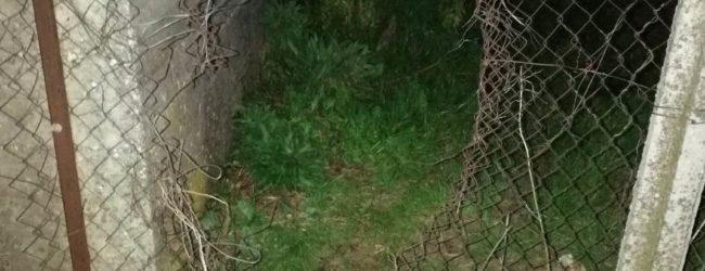 S. Martino V.C.|Taglia la recinzione e s'introduce in casa per rubare, 50enne in manette