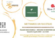 Montoro| Un laboratorio sull'olio extravergine d'oliva, appuntamento a Palazzo Macchiarelli