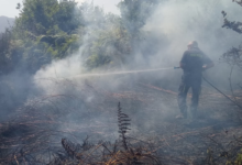 Ancora incendi in Irpinia: fiamme a Cerzeto, elicottero della Protezione civile a Montemiletto