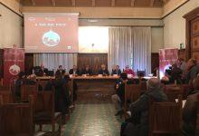 Natale a Benevento con la novità del 3d. No al Concertone di Capodanno