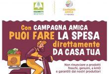 Benevento| Coronavirus,Coldiretti; cibo contadino con consegne a domicilio