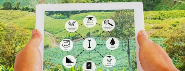 L'agri-food e i progetti Prima nel Mediterraneo allargato