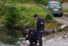 Solofra| Inquinamento del Sarno, multe e denunce per 5 imprenditori conciari