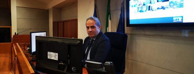 Stato di salute dell'Agricoltura campana, Petracca: piano di rilancio sulla scrivania di De Luca