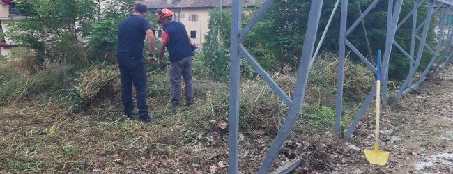 Benevento| Interventi di manutenzione del verde