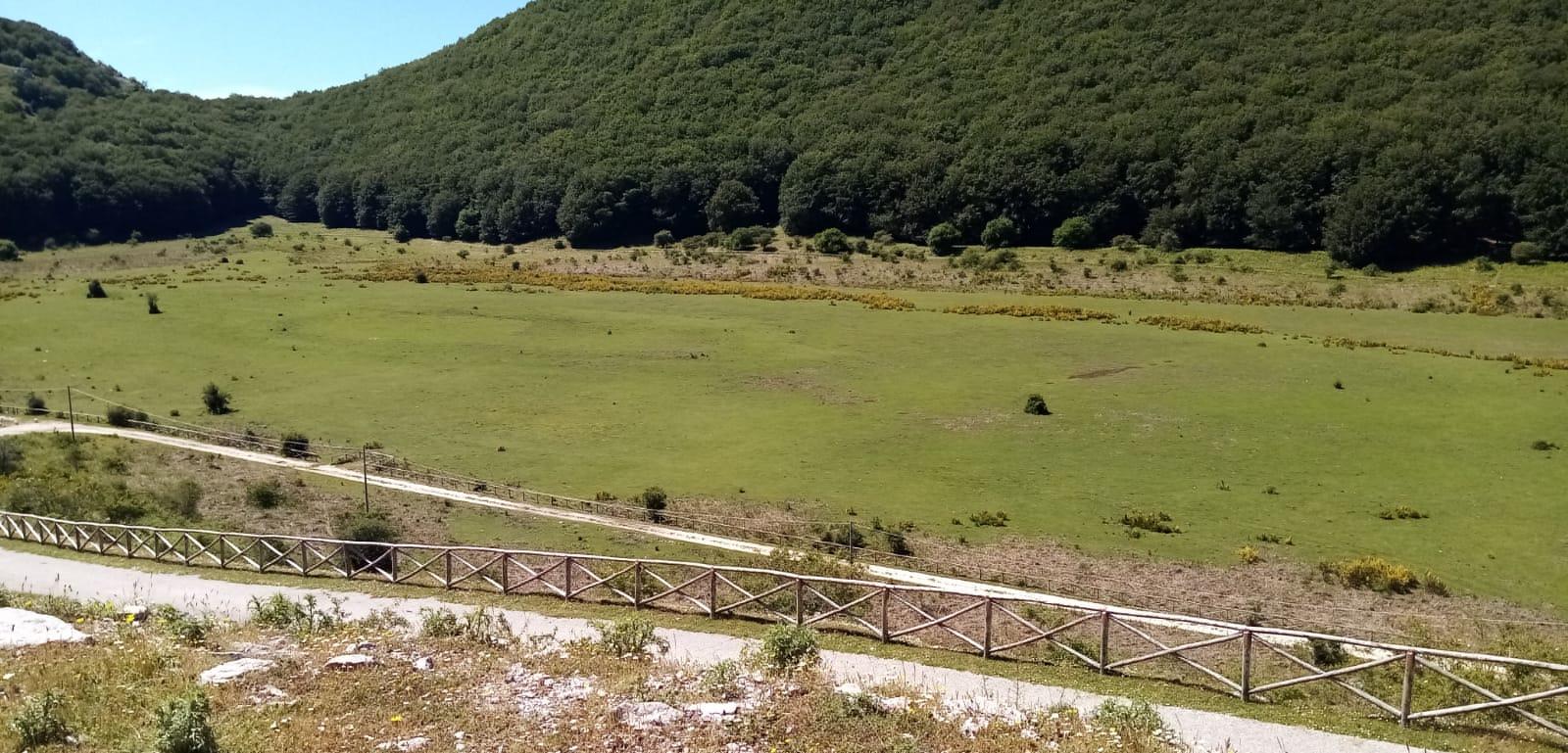 A Piana di Camposauro l'evento 'Incontriamoci nella natura'