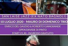"""""""Mauro Di Domenico Trio"""" apre la rassegna del parco San Laise"""