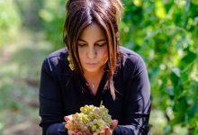 Biodigestore a Chianche, Sarno (M5S): scelta da rivedere, tuteliamo le produzioni di vino