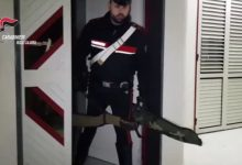 'Ndrangheta: favorivano la latitanza dei boss: 14 arresti in Calabria. In azione anche i Carabinieri di Benevento