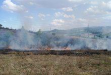 Benevento  Prevenzione incendi boschivi, riunione in Prefettura: sinergia tra Forze dell'ordine ed Enti pubblici