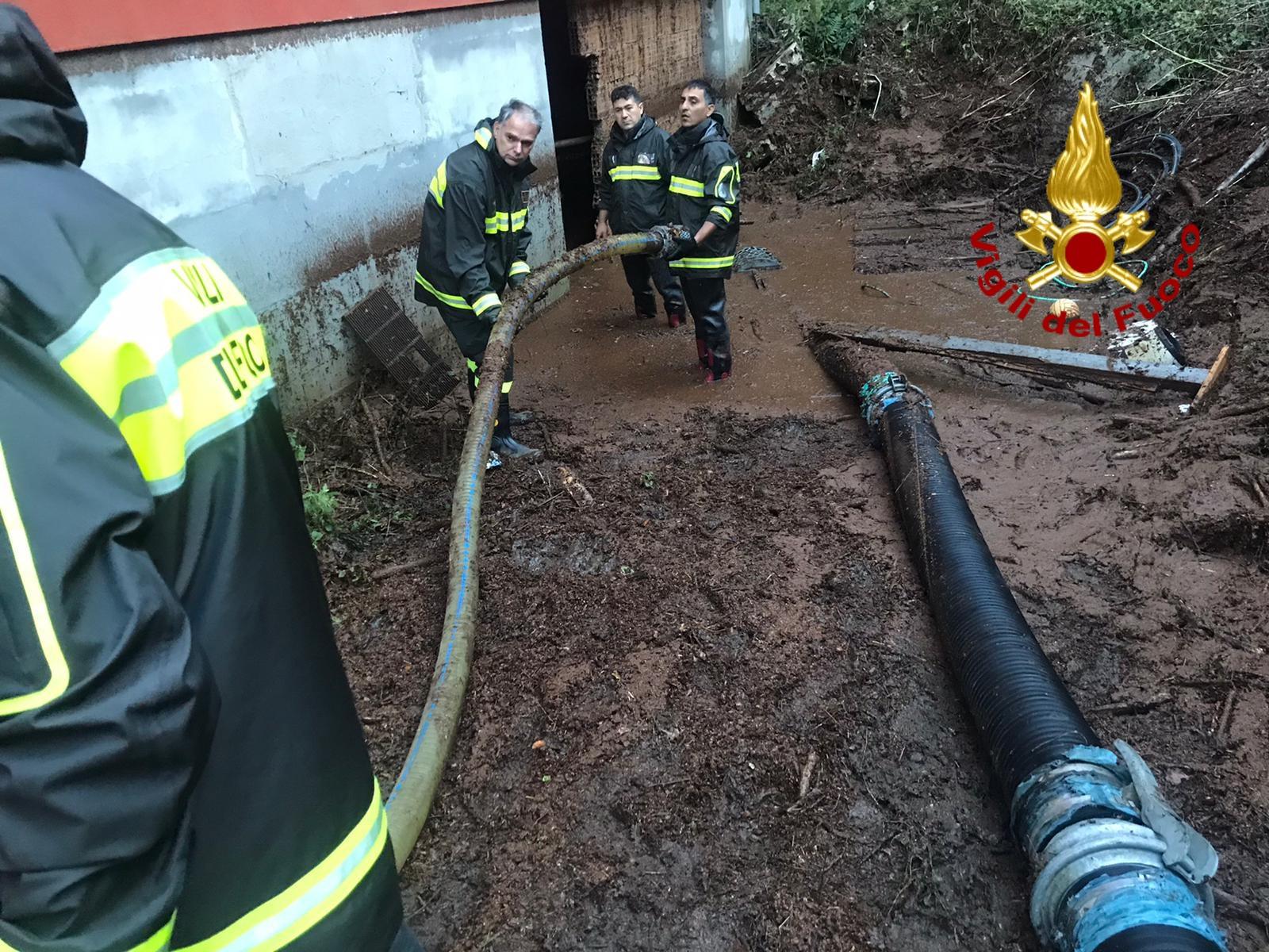 Alberi caduti e allagamenti, il maltempo flagella l'Irpinia: 60 interventi dei vigili del fuoco