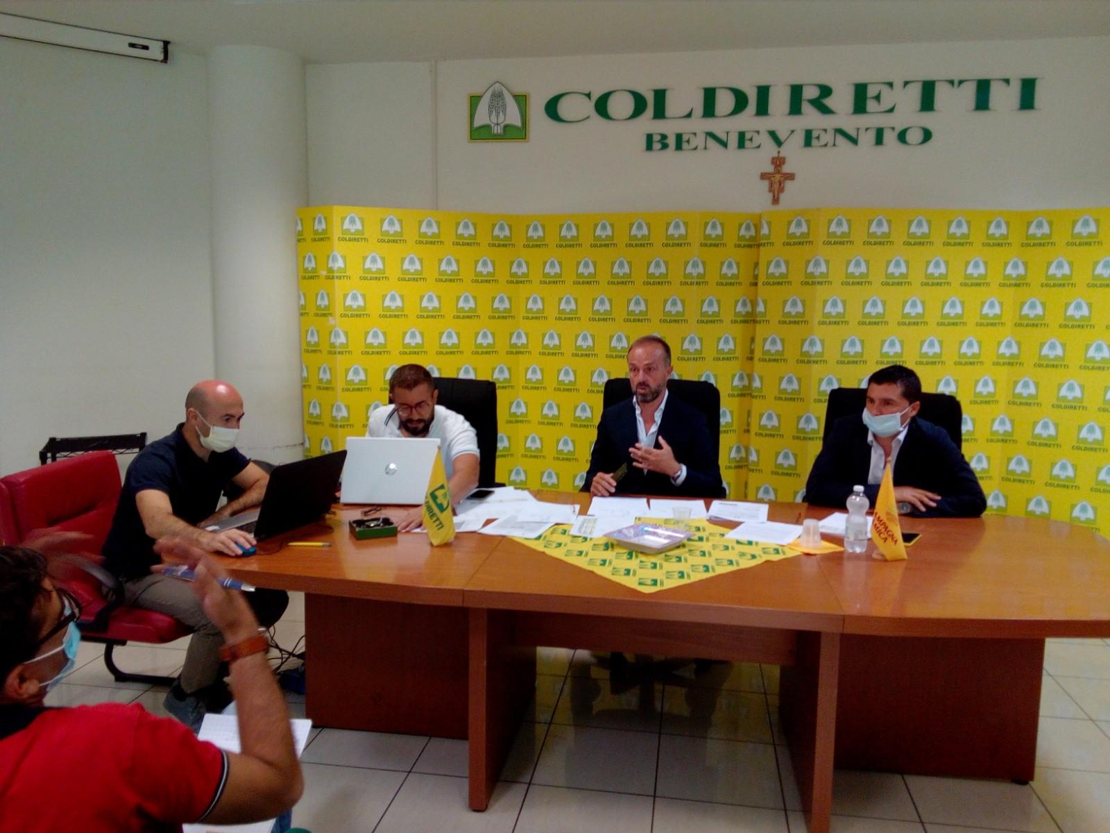 Coldiretti, SOS speculazione sul prezzo dell'uva