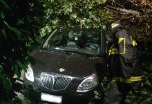 Allagamenti e alberi caduti in Irpinia, la giornata dei vigili del fuoco