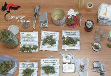 Montoro| Nascondeva hashish e marijuana in casa e nel garage, in manette 41enne