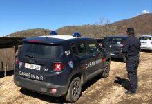 Calvi| Carabinieri Forestali ritrovano rifiuti pericolosi