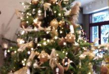 Tutti in attesa del nuovo DPCM, che Natale sarà?
