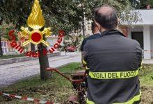 Bisaccia| Si ferisce agli arti mentre pulisce il giardinetto comunale, ricoverato al Moscati