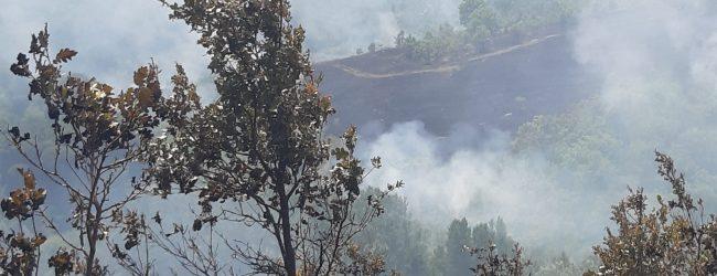 Ancora fiamme in localita' San Giovanni di Apollosa