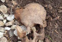 Cervinara  Teschio umano ritrovato in montagna da un cercatore di funghi, indagano i carabinieri