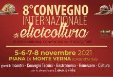 Elicicoltura, dal 5 all'8 novembre appuntamento a Piana di Monte Verna